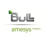 logo_amesys